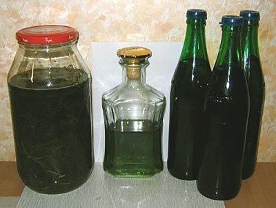 Каланхоэ лекарственное растение