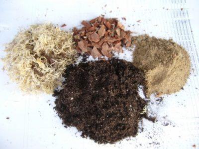 Как улучшить купленную почву?