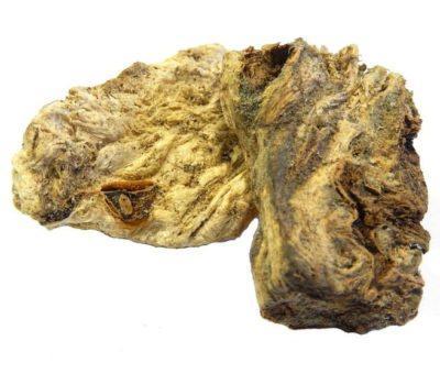 Молочай палласа мужик корень отзывы. Молочай палласа лечебные свойства и применение
